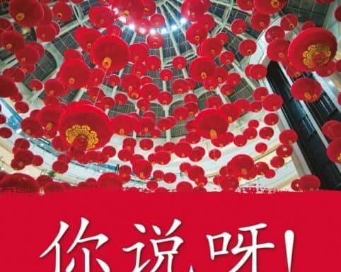 Critique: Ni shuo ya! Méthode de chinois A1/A2