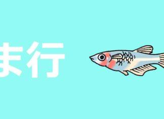 hiragana ma