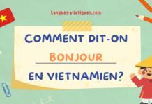 Comment dit-on bonjour en vietnamien ?